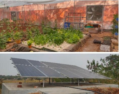 Solar Powered Polyhouse Fan-Pad System